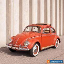 1959 Volkswagen Beetle - Classic Beetle Okrasa Powered