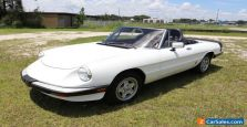 1984 Alfa Romeo Spider Veloce Convertible Must See 80+ HD Pictures for Sale