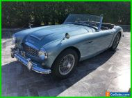 1957 Austin Healey 100-6 Austin Healey 100-6 / Healey Blue / Pure British Roadster