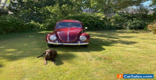 1955 Volkswagen Beetle - Classic Beetle  Sedan