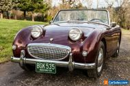1959 Austin Healey Sprite BEAUTIFUL