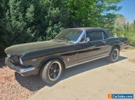 1966 Ford Mustang Pony Edition