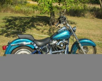 1988 Harley-Davidson Softail for Sale
