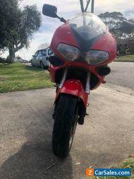 Suzuki tl1000s red motorcycle