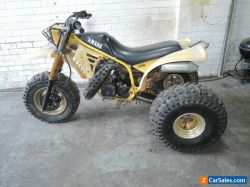 Yamaha YTZ250 TRI-Z Trike 1985 2 stroke motor cross runs well VMX No Reserve ATC