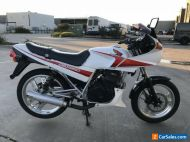 HONDA CBX 250 CBX250 04/1985 MODEL 46772KMS CLEAR TITLE PROJECT MAKE AN OFFER