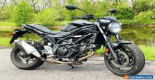 2020 Suzuki SV
