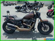 2019 Harley-Davidson Softail