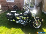 Harley Davidson STC Softtail